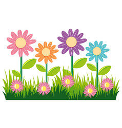 seamless nature design with flowers and grass vector image