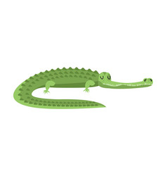 sleeping crocodile alligator is asleep sleepy vector image