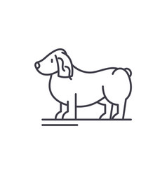 spaniel line icon concept spaniel linear vector image