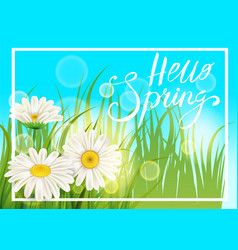 Spring daisies chamomiles juicy green lettering vector