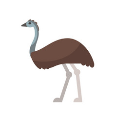 flat style of emu vector image vector image
