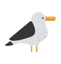 Great gull bird vector image