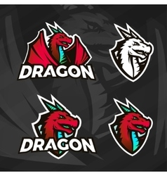 Creative dragon logo template Sport mascot design vector image