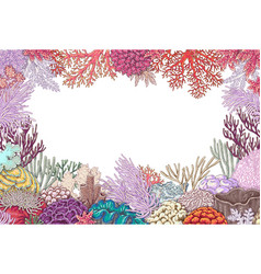 Frame of corals vector
