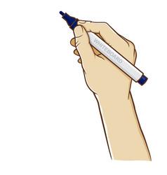 hand holding whiteboard marker vertically vector image