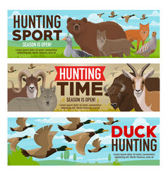 hunting sport animals and birds hunt open season vector image