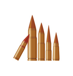 isolated bullets gun vector image