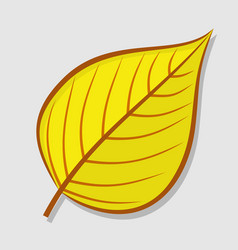 linden autumn leaf isolated on a white background vector image