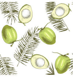 seamless pattern with hand drawn coconuts and palm vector image