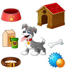 supplies for dog cartoon vector image