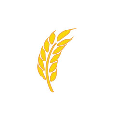 wheat graphic design template isolated vector image
