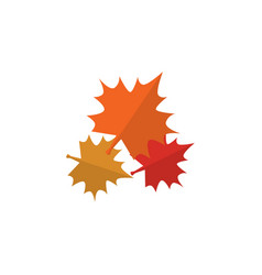Isolated maple leaf flat icon canadian vector