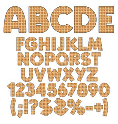 alphabet numbers and signs from wafers vector image