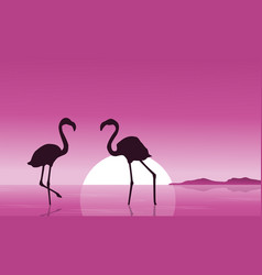 collection of flamingo at sunset scenery vector image