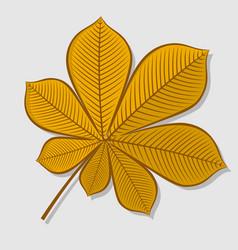 chestnut autumn leaf flat design vector image