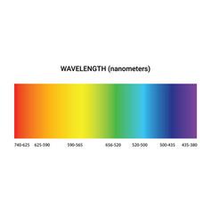 light spectrum color electromagnetic wavelength vector image