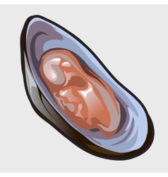 Open delicious oyster icon for design needs vector