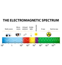 The electromagnetic spectrum diagram vector image