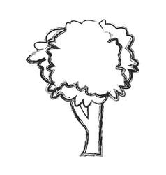 Tree natural foliage image sketch vector