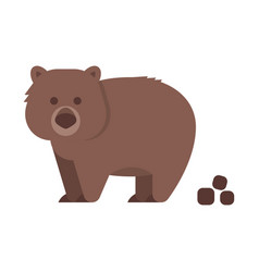flat style of wombat vector image vector image