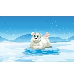 A polar bear above iceberg vector