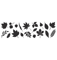 black autumn leaves decorative fall elements vector image