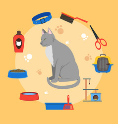 Cartoon cat care concept vector