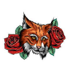 color cat roses on white vector image