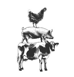 Engraved style farm animals collection for vector