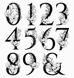 Hand drawn floral numbers monograms and vector