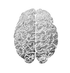 human brain gray color vector image