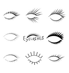 realistic eyelash textures vector image