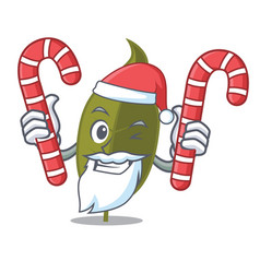 Santa with candy bay leaf mascot cartoon vector