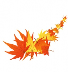 twisted leaves vector image