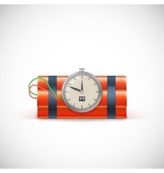 Bomb with clock vector image vector image