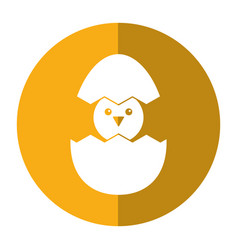 cute easter egg chick shadow vector image