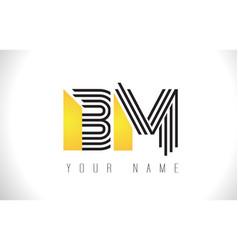 Bm black lines letter logo creative line letters vector