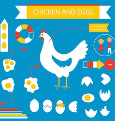 Chicken and eggs infographic set vector image