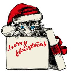 Christmas kitten in santa stocking hat hand drawn vector