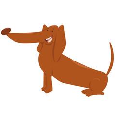 Dachshund dog cartoon character vector