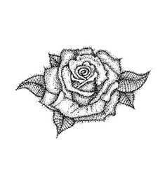 Dotwork rose flower vector