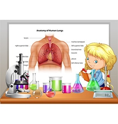Girl learning in science class vector