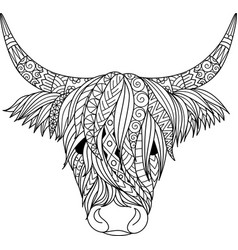 highland cow vector image