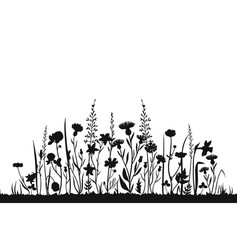 wildflower silhouettes wild grass spring field vector image