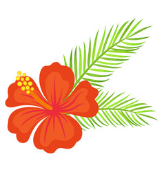 floral decoration hawaiian flower with leaves vector image