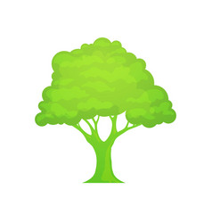 green logo of tree vector image