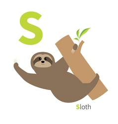 Letter S Sloth hanging on tree Zoo alphabet vector