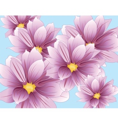 Lily flowers composition vector