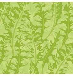 Pattern green dandelion leaves vector image