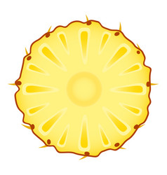 pineapple slice on white vector image